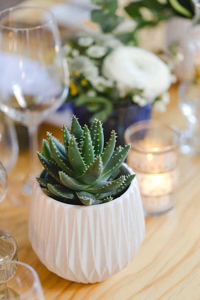 kleine Sukkulente in weißem Topf als Hochzeitstischdeko | Foto: Hanna Witte Hochzeitsreportagen