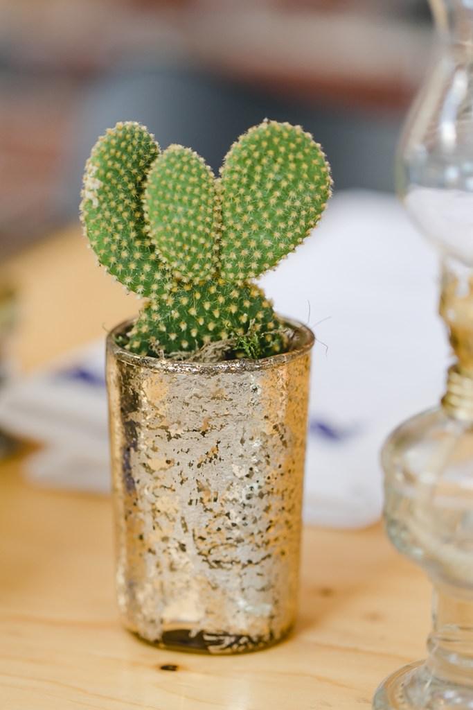 kleiner Kaktus in goldenem Topf als Tischdeko einer Hochzeit | Foto: Hanna Witte Hochzeitsreportagen