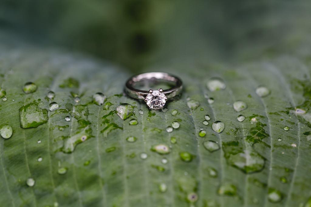 ein Trauring mit Diamant liegt zwischen Regentropen auf einem grünen Blatt | Foto: Hanna Witte